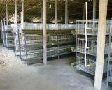 96、120、128の160羽の鳥容量電池の層の鶏のケージ