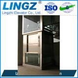 De Lift Dumbwaiter van het Voedsel van Lingz