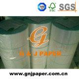 documento termico di rotolamento enorme della pasta di cellulosa 48-65GSM per digitare
