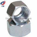 육각형 견과 탄소 강철은 견과 스레드 여성 견과 연결 견과 DIN 견과를 위조했다