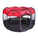 يزوّد محبوب [فولدبل] خارجيّ قطع كلب يرفع خيمة