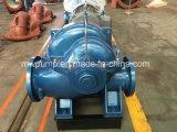 Bomba centrífuga de 600ms22 Caso Split Bomba de agua