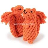 La masticazione del prodotto dell'animale domestico della corda del cotone gioca lo scoiattolo arancione sveglio