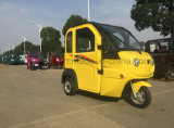 800W New Electric Rickshaw com corpo fechado