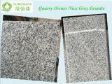 Granito Polished Nizza di colore grigio di prezzi competitivi del proprietario della cava
