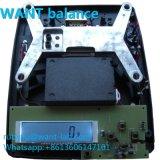 Doppelte LCD-Bildschirmanzeige mit hohem Ausgleich mit grossen Kapazitäts-Digital-Schuppen