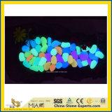 The Seashell brilha no escuro/Preto/Branco multicolorido vermelho/cinza Pedra Afogarem para jardinagem/Pavimentação/Jardim/quintal/Piscina/Decoration/Fora/Flooring/Espalhadoras/paisagem