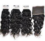 Монголия по-французски необработанной кривой Virgin для волос (Категория 9A)