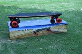 長いボードが付いている4つの車輪の電気スケートボード