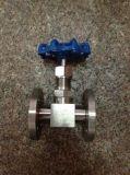 Válvula de aguja de acero forjado (J13W-6000PSI)