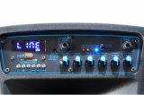 Altavoz portátil de gran potencia con tecnología inalámbrica Bluetooth Karaoke Mic 10 pulg.