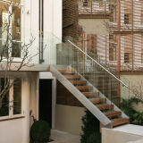 Escalera recta moderna del kit de la escalera de las escaleras rectas