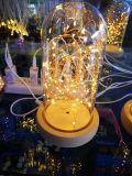 장식 정원 갑판 안뜰 당 결혼식 크리스마스를 위한 뚜껑 삽입이 태양 온난한 백색 요전같은 끈에 의하여 점화한다