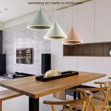 Lámpara pendiente colgante de la lámpara con el LED para la decoración