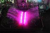 Grande fontaine de danse d'oscillation de lac de Drcorative de forme extérieure d'oiseau