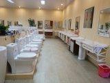Toilette en céramique d'une seule pièce superbe de cabinet d'aisance de Siphonic (8012)