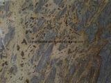 Плитка строительного материала гранита Китая для стены (austine золотистое)