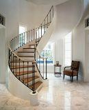 最も遅く使用された装飾用のBeauifulの錬鉄階段柵