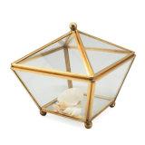 Directe de Fabriek van de Doos van de Gift van de Juwelen van het Glas van de laagste Prijs verkoopt