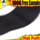Cheveu brésilien de Vierge de noir de gicleur de Double couche