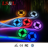 Indicatore luminoso di striscia impermeabile della corda dello Striplight del LED RGBW per illuminazione domestica