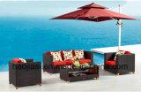 /Rattan esterno/sofà HS1625 del rattan della mobilia hotel Patio//del giardino