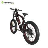 速の2017セリウムが付いている最も新しいデザイン脂肪質の電気バイク