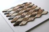 Shell de los nuevos productos y mosaico de agua dulce del mármol
