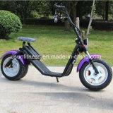 Novo Design grande roda City Coco Moto Scooter Pneu gordura com bateria de lítio