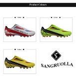 2017新しいデザインはほとんどの普及したメンズ屋外のフットボールの泥炭のサッカー靴をクリートで補強する