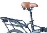 Stilvolles e-Fahrrad mit versteckter Batterie