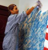 Carta da parati naturale del liquido della fibra del cotone del nuovo rivestimento artistico interno del Decorazione-Rainbow