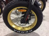 뚱뚱한 색깔 TFT IPS 전시를 가진 바닷가 4.0 전기 자전거