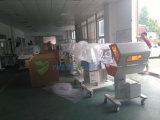 Ysbl-500d de medische Lampen van Phototherapy van de Geelzucht van het Gebruik van de Zorg van de Zuigeling