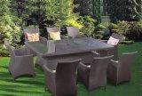 La mobilia del giardino del rattan imposta le presidenze per la mobilia esterna del patio