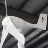 바람 태양 혼성 시스템을%s 400W 12V 바람 터빈 바람 팬