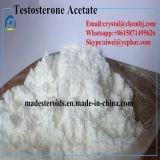 Esteroide anabólico de la testosterona del acetato de la testosterona de la pureza del 99% para el Bodybuilding 1045-69-8