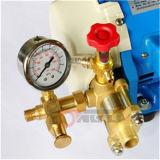 Hand Hydraulische Elektrische Pomp 2.9L/Min van de Pomp van de Test van de Olie of van het Water (DSY60)