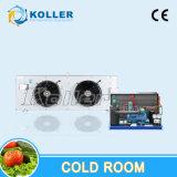 Schnelles Tiefkühlverfahren -18 bis C gefrorener Kühlraum -20 für Meeresfrüchte