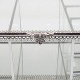 Превосходный стеклянный ясный витринный шкаф ювелирных изделий ожерелья встречной верхней части