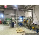 Ligne de pelletisation de feuille de plastique de PP/PE/Aluminized