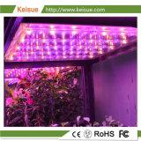 Sistema di illuminazione completo di spettro LED per il sistema verticale