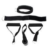 stellten elastische Trainings-Gefäß-Eignung-Widerstand-Bänder der Übungs-12PCS/Set für Yoga Pilates ein