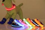 El brillar intensamente de destello del LED de perro de los collares del Light-up de nylon de la seguridad en obscuridad