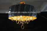 Projekt-dekorativer moderner Leuchter-hängende Beleuchtung (ka9022)