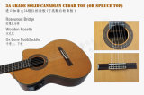 Parte superior de alta qualidade Aiersi Cutway elétrica sólida guitarra clássica (SG02ARCE)