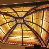 Het mooie Moderne Decoratieve Plafond van het Frame van de Tegel van het Ontwerp van de Douane van Stijlen