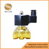 L'elettrovalvola a solenoide idraulica con il trattamento ha placcato