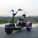 Triciclo 2018 elétrico novo com o pneu de 3 gorduras