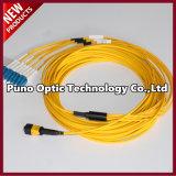 Mini OS2 MPO Câble à fibre optique Câble rond simple à mâle LSZH Plenum